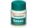 gasex, gastricare, ヒマラヤ ガセックス ガストリケア