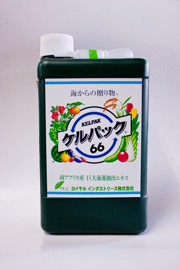 ケルパック66 1Lボトル