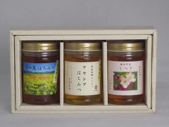 澤谷養蜂園 蜂蜜ギフトA