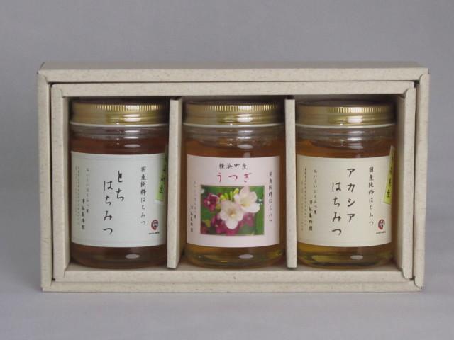 澤谷養蜂園 蜂蜜ギフトB