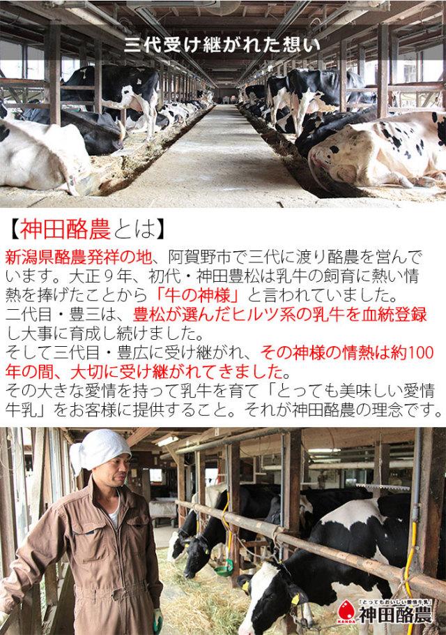 生乳みるく&糀ジェラート 6個セット(生乳みるく×2、塩糀みるく×2、糀クリスタル×2)神田酪農