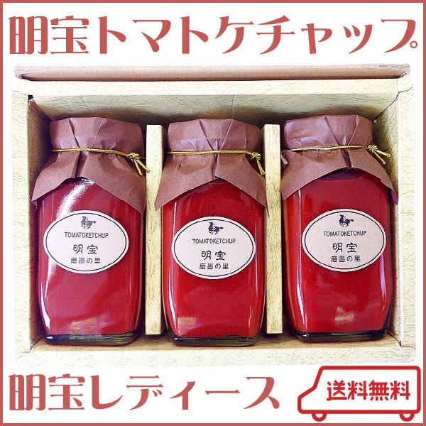 明宝トマトケチャップ300g×3本セット【明宝レディース】