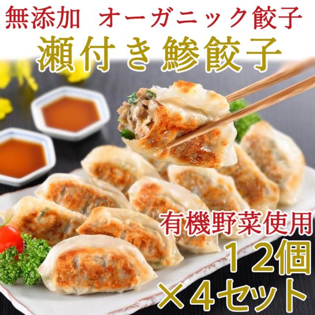 無添加 瀬付き鯵餃子 210g(12個)×4セット【天然魚と有機野菜、オーガニック皮を使用】