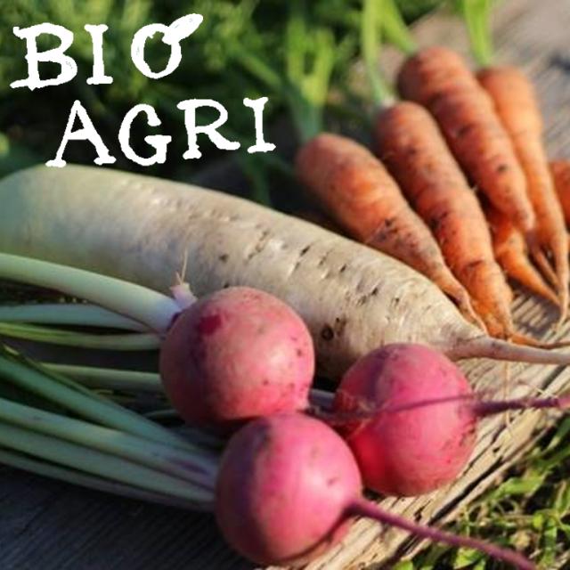 淡路島の自然栽培野菜 ビオアグリの野菜セット