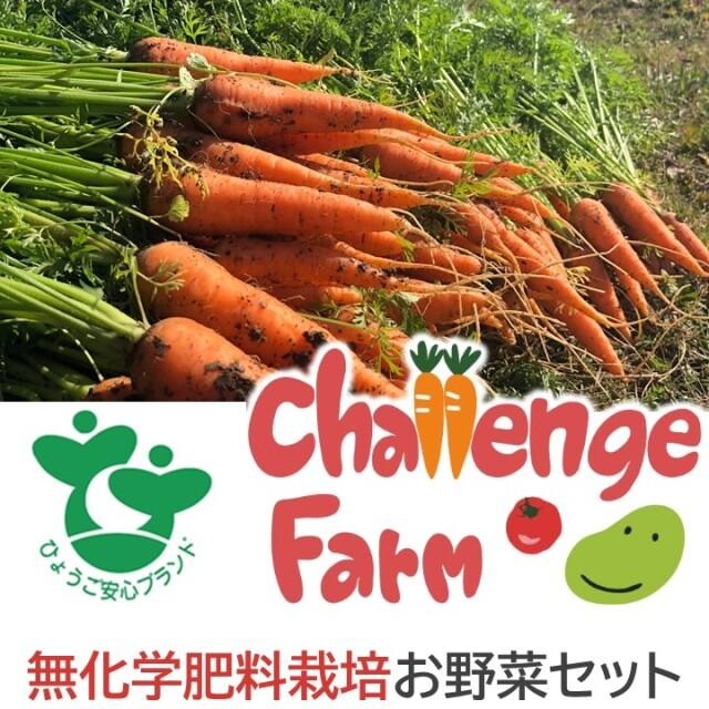 【同梱不可】 チャレンジファームの無化学肥料栽培お野菜セット