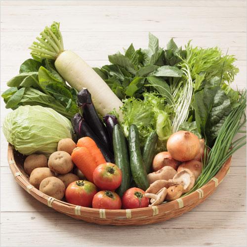 野菜たっぷりセット
