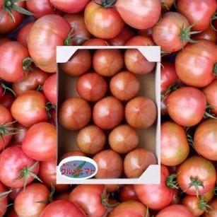 トマト正方形