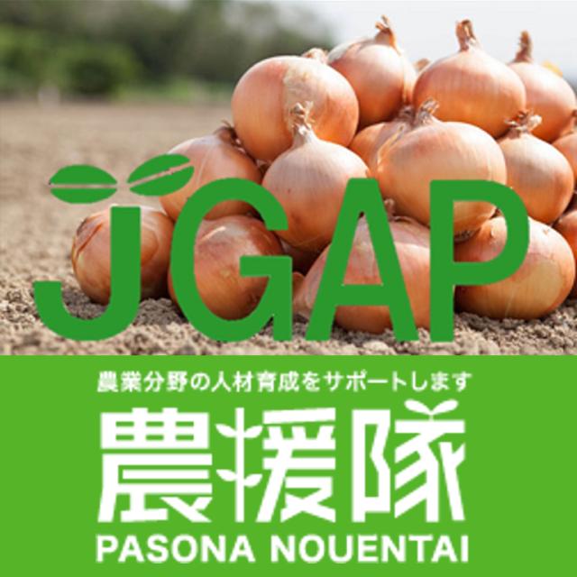安全・安心のパソナ農援隊 JGAP認証新玉ねぎ