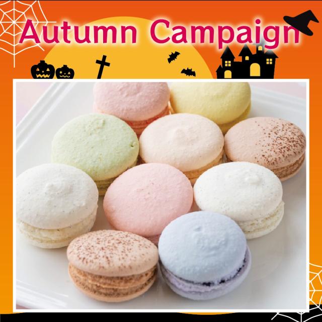 【同梱不可|送料無料】島のヴィーガンマカロン Autumn Campaign