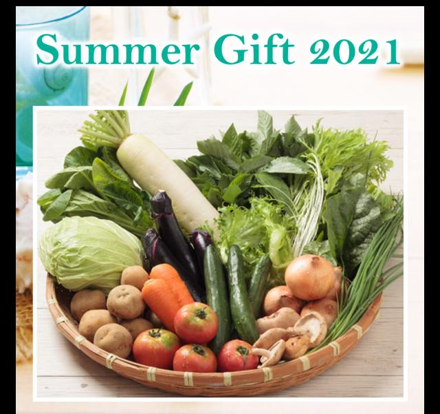 【同梱不可|送料無料】人気No.1!季節の新鮮野菜セット Summer Gift