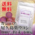 屋久島紫ウコン(ガジュツ)100%粉末100g
