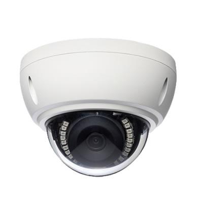 フルHDドーム型 IPネットワークカメラ IPC-19