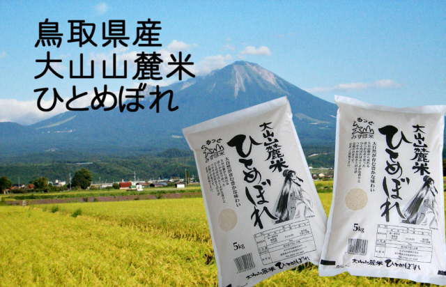鳥取県産 大山山麓米 ひとめぼれ