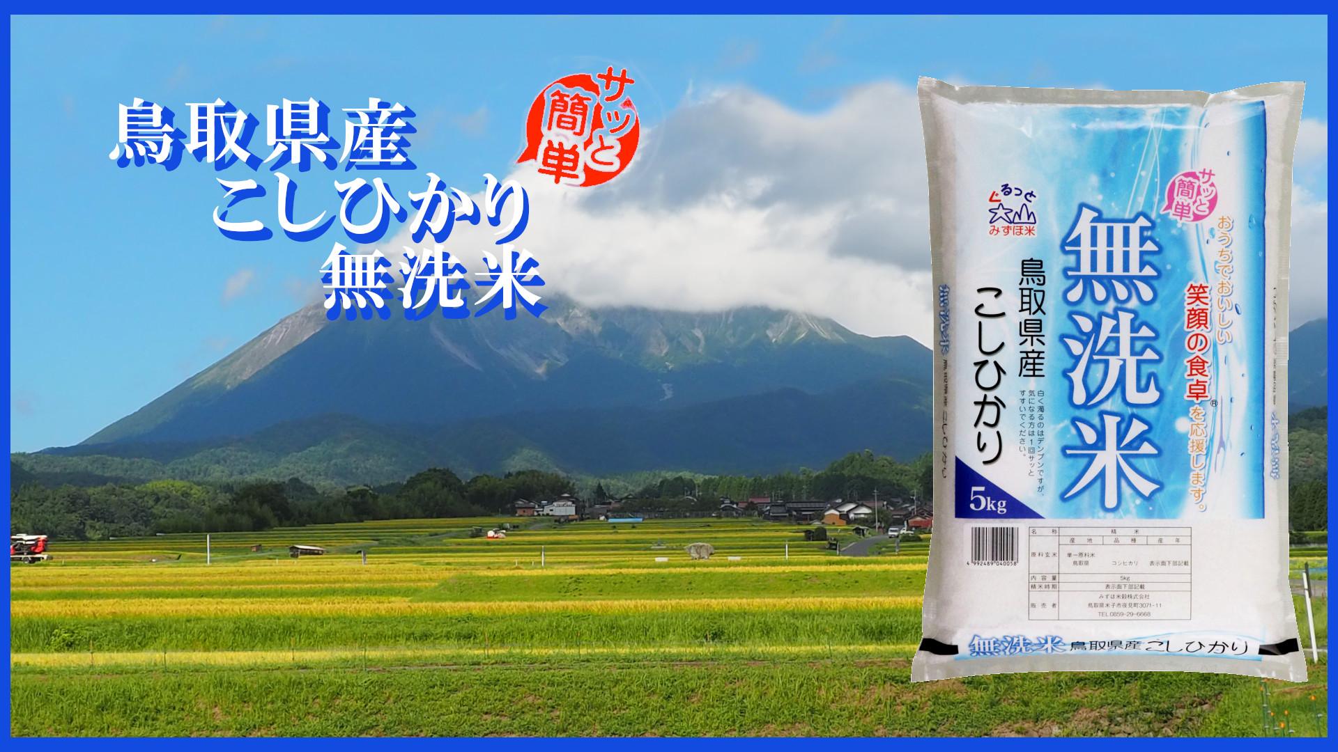 大山山麓無洗米こしひかり