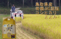 JAS 有機栽培 コシヒカリ