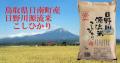 鳥取県日南町 日野川源流米こしひかり5kg