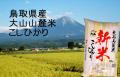 大山山麓米 こしひかり