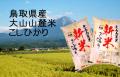 30年産 白米 鳥取県産 大山山麓米 こしひかり 5kg×2袋 (送料込)