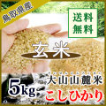 令和3年産 玄米 鳥取県産 大山山麓米コシヒカリ(選別済)5kg (送料込)