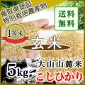 令和3年産 玄米 鳥取県 奥大山の水で育った 日野特別栽培米コシヒカリ(選別済)5kg (送料込)