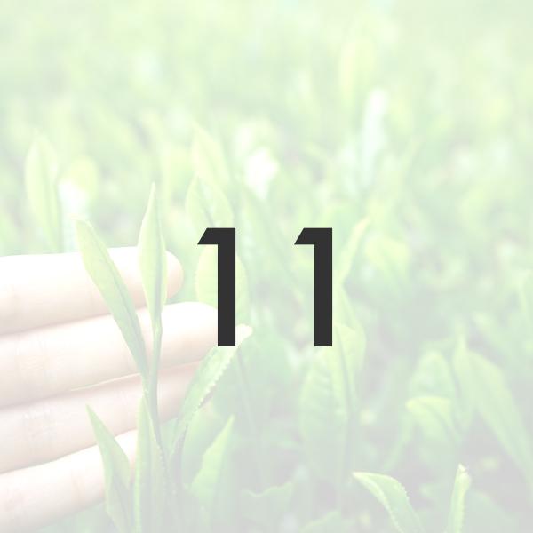 八十八夜摘み 新茶 2021年製/50g ※5月上旬より順次発送   被覆期間10日 宇治茶の新茶 メール便「可」