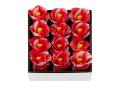 椿の花 12入