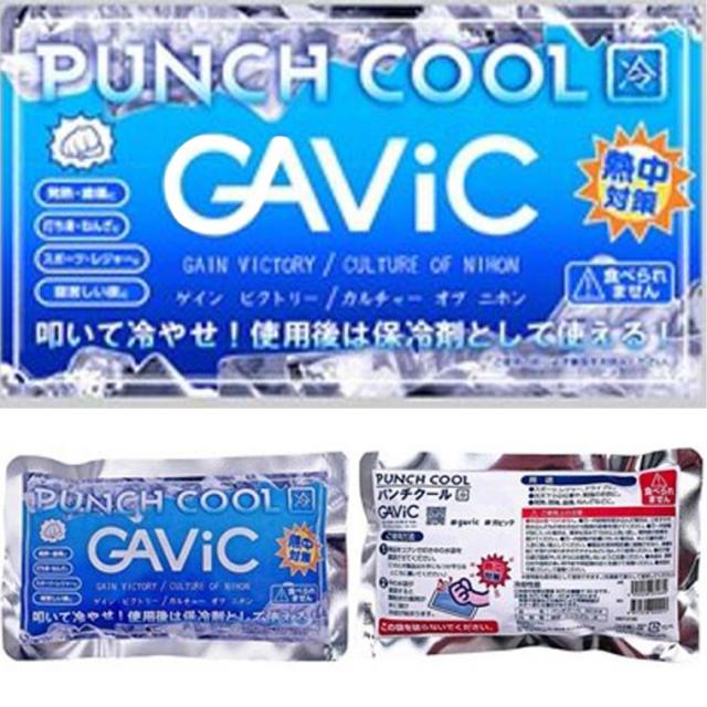 GAVIC ガビック 冷却保冷剤 パンチクール 熱中症対策 ゆうパケット対応商品