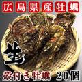 生牡蠣 殻付き 加熱用 20個 【広島県産】 瀬戸内海で育った新鮮な牡蠣!