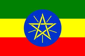 エチオピアベルガ1