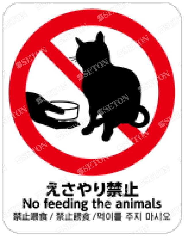 フロア・サインマークシール オリジナル えさやり禁止 ネコ 言語あり 140×180
