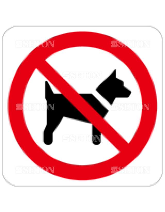 フロア・サインマークシール ISO 犬はダメ 言語なし 140×140