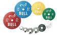 BULL IPF公認パワーリフティングプレート 0.5kg(2枚1組) BL-PLP0.5