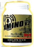 【アミノ酸 サプリメント】GOLD'S GYM  アミノ12パウダー500g