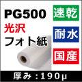 PG500