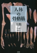 人体の骨格筋 上肢
