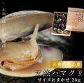 【送料無料】最高級の三重県桑名産天然はまぐり(地蛤) サイズおまかせ 2kg