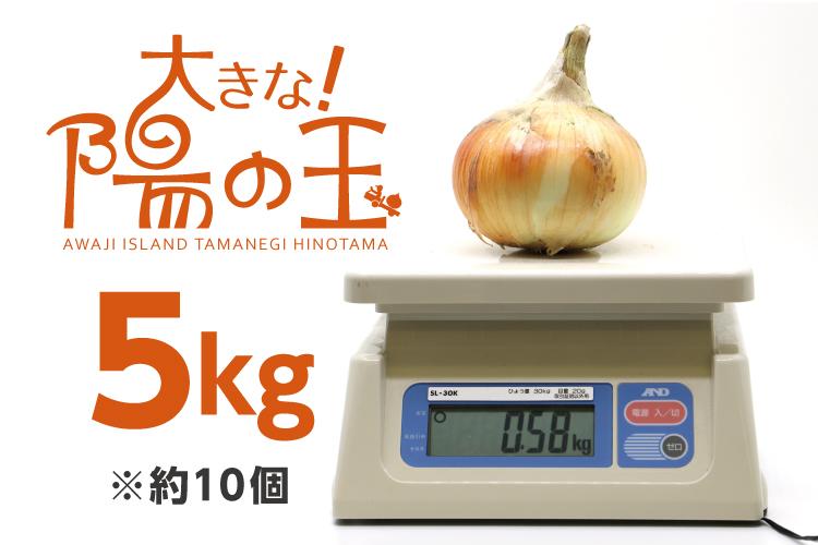 【通販|淡路島産玉ねぎ】大きな陽の玉 5kg