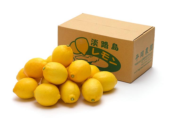 【ワックス・防腐剤不使用】皮まで美味しく食べられる 淡路島産 アレン・ユーレカレモン 2kg