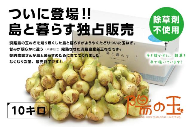 【通販|淡路島産新玉ねぎ】陽の玉(ひのたま) 10kg