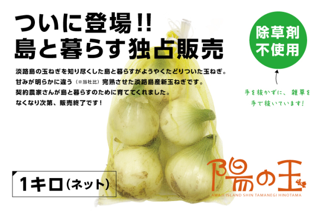 【通販|淡路島産新玉ねぎ】陽の玉(ひのたま) 1kg(ネット入り)