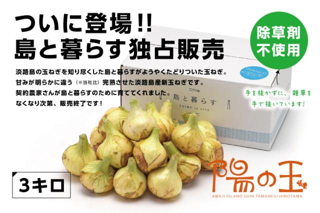 【通販|淡路島産新玉ねぎ】陽の玉(ひのたま) 3kg