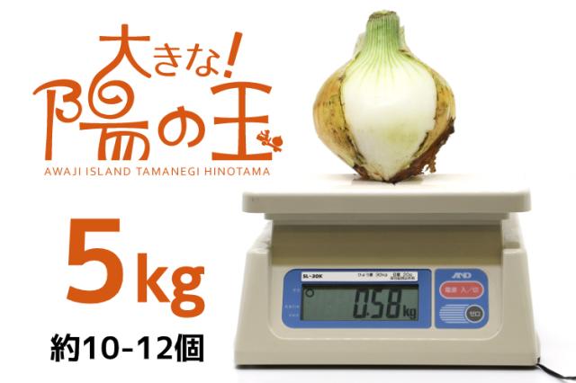 【通販限定|淡路島産玉ねぎ】大きな陽の玉 早生5kg