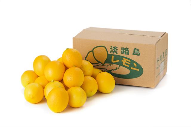 【ワックス・防腐剤不使用】レモンとみかんの自然交配種 マイヤーレモン 2kg【11月頃~】