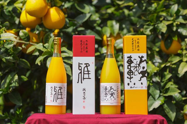 【通販|ギフト包装|愛媛県】NADAフレッシュジュース2本セット