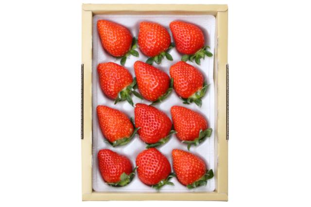 【通販】イチゴ|【長畠高原苺園】朝摘み・即日発送!甘くて酸味の少ない香るいちご「かおり野」 大12粒
