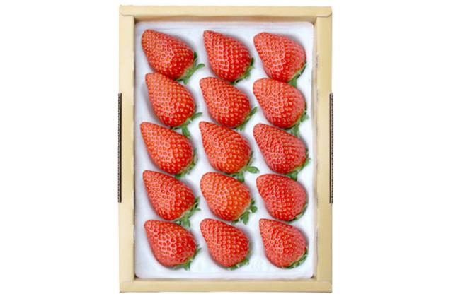 【通販】イチゴ|【長畠高原苺園】朝摘み・即日発送!甘くて酸味の少ない香るいちご「かおり野」 中15粒