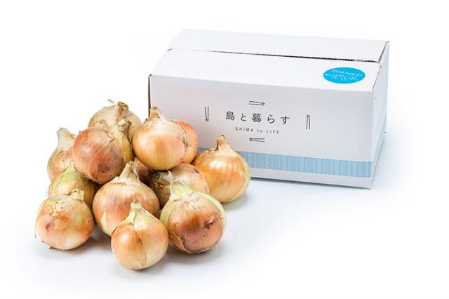 【中生(なかて)】 淡路島産玉ねぎ3kg