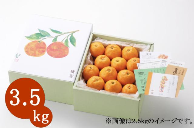 西宇和産 温州みかん 3.5kg【晴富】