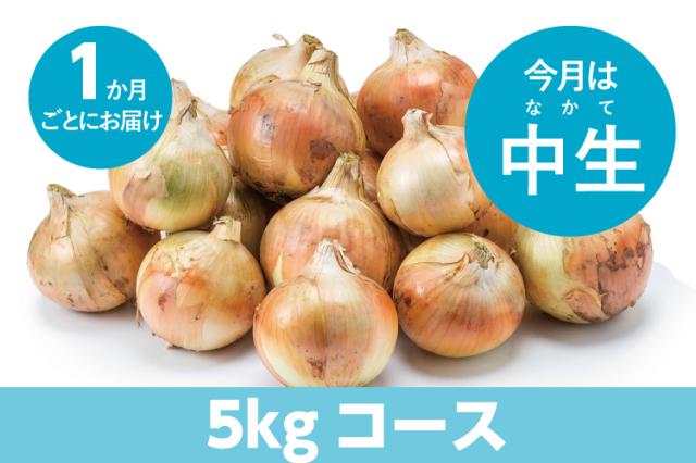【島の玉ねぎ定期便】5kgコース:1ヵ月に1回お届け