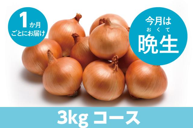 【島の玉ねぎ定期便】食べきりコース(3kg~4kg):1ヵ月に1回お届け